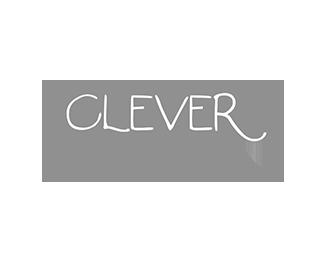 Clever-Option klant grijs